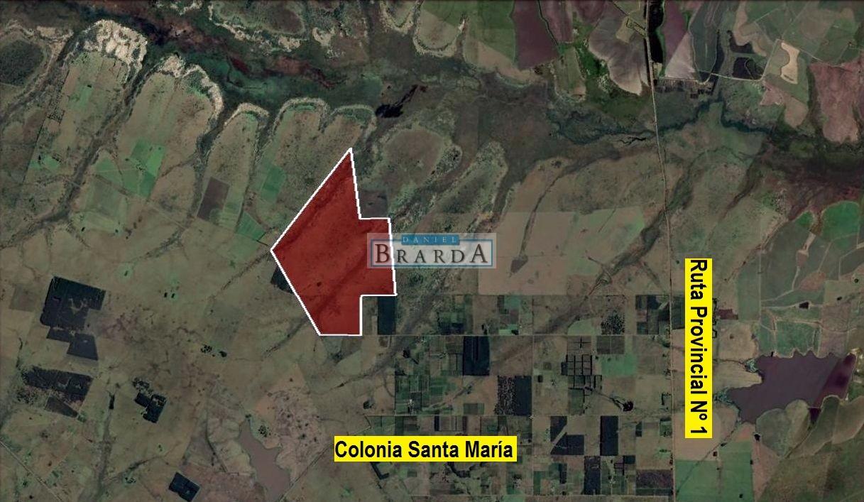 470 Has. de campo en Colonia Santa María, Departamento Federación (ER)